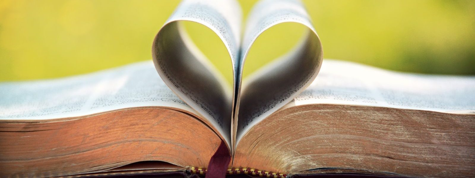 the biblical use and definition of love