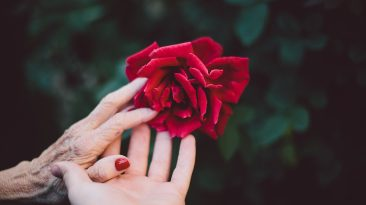 Hugs From Heaven: Abundant, Grateful Life